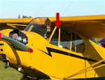 Front Triangle (Left) - Piper Cub J-3