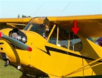 Rear Window (Left) - Piper Cub J-3